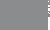 MJ Mallis Wulftec dot com fast logo